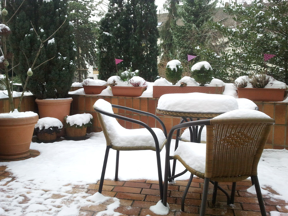 Winter came back to Cologne: the terrace of our house.